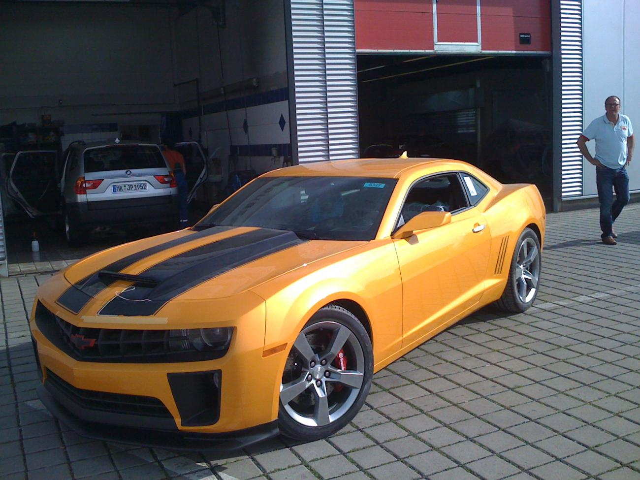 Is It Me Or Does Yellow Blaze Tricoat Look Like Bumblebee