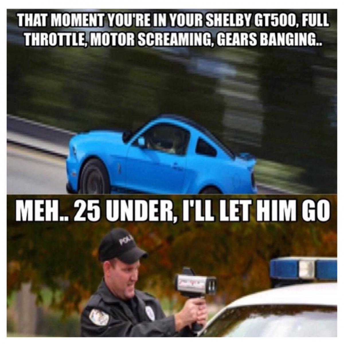 Mustang Vs Camaro Meme