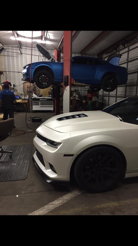 Flat Pearl White Camaro