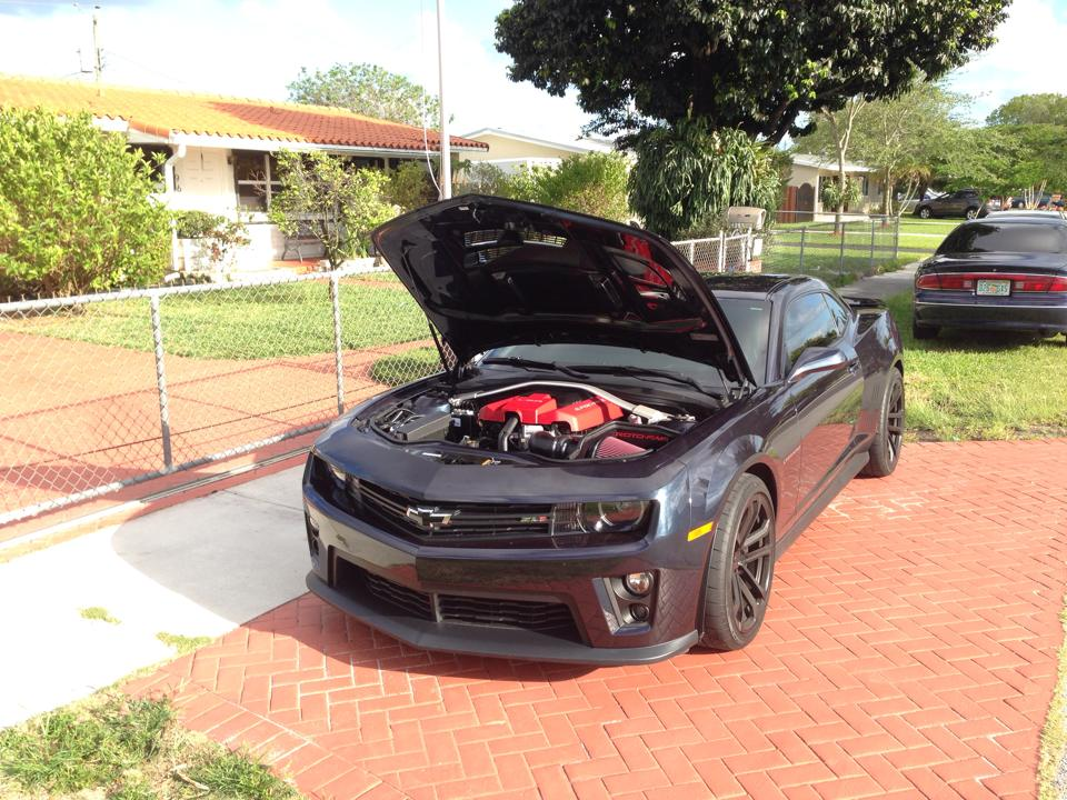 camaro zl1 for sale 8k miles awesome car camaro5 chevy camaro. Cars Review. Best American Auto & Cars Review
