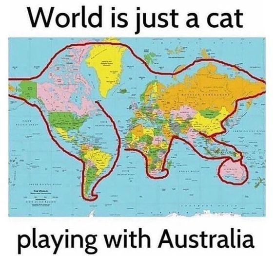 Name:  world-cat.jpg Views: 494 Size:  57.3 KB